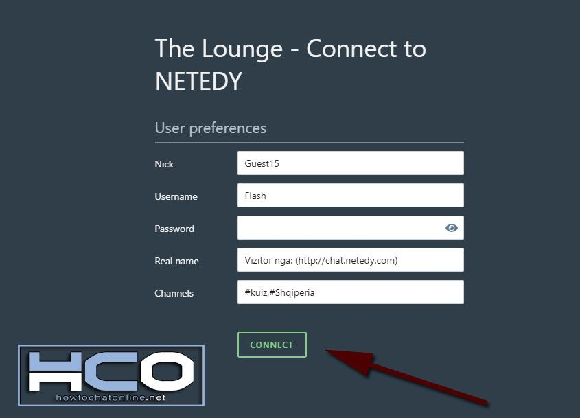 How to Use Netedy Chat - Step 5 Click on Connect