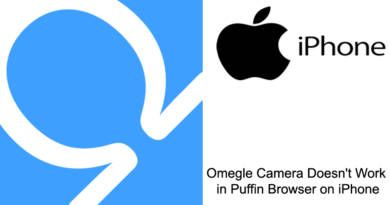 Omegle Camera Doesnt Work in Puffin Browser on iPhone