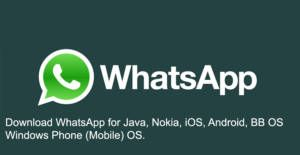 Download WhatsApp | How to Chat Online