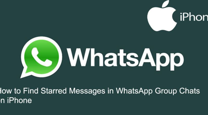 How to Find Starred Messages in WhatsApp Group Chats on iPhone
