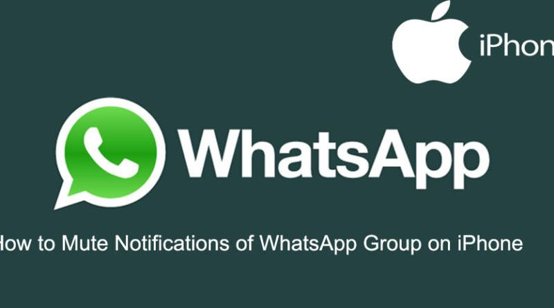 How to Mute Notifications of WhatsApp Group on iPhone