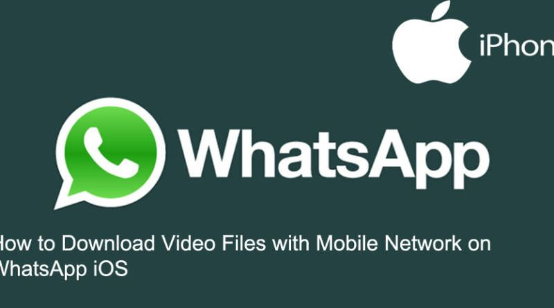 How to Download Video Files with Mobile Network on WhatsApp iOS