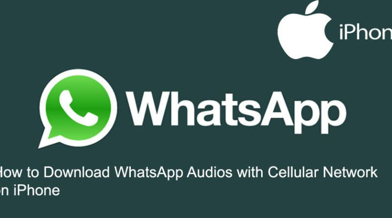 How to Download WhatsApp Audios with Cellular Network on iPhone