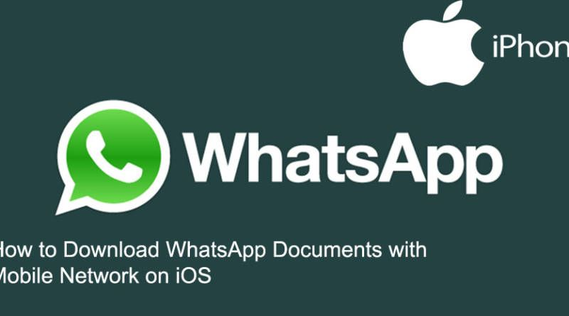 How to Download WhatsApp Documents with Mobile Network on iOS