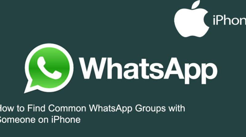 How to Find Common WhatsApp Groups with Someone on iPhone