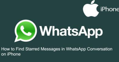 How to Find Starred Messages in WhatsApp Conversation on iPhone