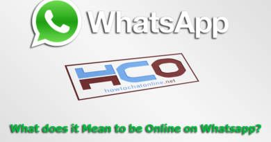 What does it Mean to be Online on Whatsapp