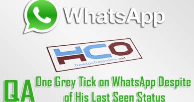 One Grey Tick on WhatsApp Despite of His Last Seen Status