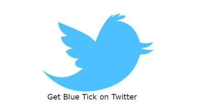 How to get blue tick on Twitter?